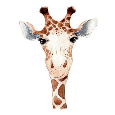 Väggdekor Cute giraffe cartoon watercolor illustration animal