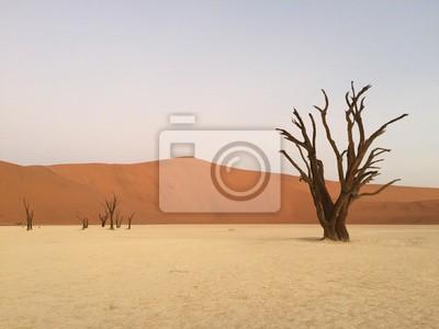 Väggdekor Dead Vlei, Namibia