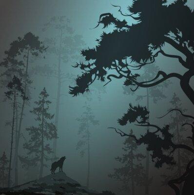 Väggdekor dimmig landskap med siluett av skog, tallar och varg, månsken