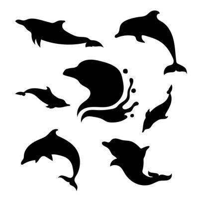Väggdekor Dolphin uppsättning vektor