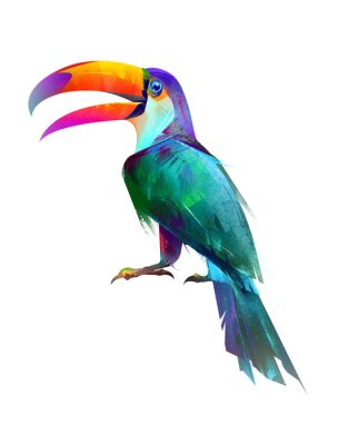 Väggdekor dragna isolerade ljusa fågel sitter toucan sida