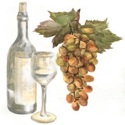 Väggdekor Druvor, vin flaska, vitt vin i ett glas vin glas. akvarellmålning