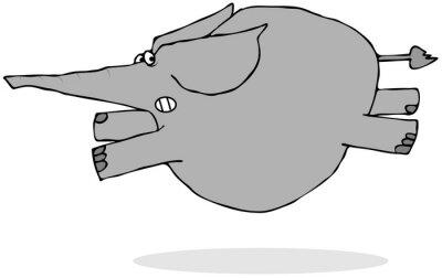 Väggdekor Elefant löpning rädd