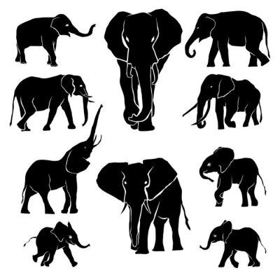 Väggdekor Elefantsilhouette Pack