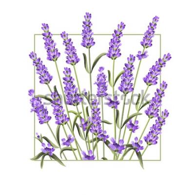 Väggdekor Elegant kort med lavendelblommor. Lavendel-rektangelramen och texten Sommar. Lavendelgräns för din textpresentation. Vektorillustration.