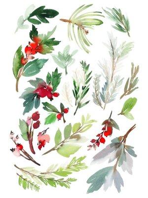 Väggdekor En uppsättning julblomelement på en vit bakgrund