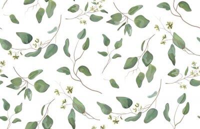 Väggdekor Eucalyptus olika träd, löv naturliga grenar med gröna blad frön tropiska sömlösa mönster, akvarell stil. Vektor dekorativa vackra söta eleganta illustration isolerad vit bakgrund