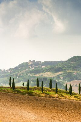 Väggdekor Fält i Toscana