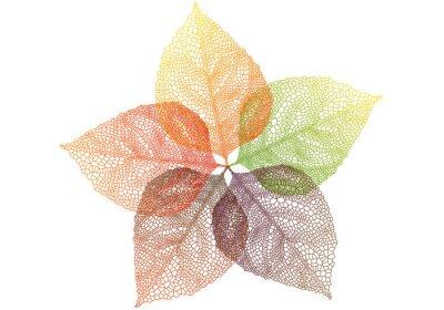 Väggdekor färgglada höstlöv, vektor
