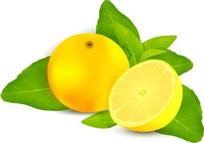 Väggdekor Färska citroner med blad vit bakgrund
