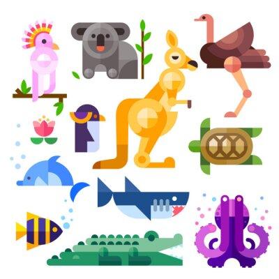 Väggdekor Fina platta australiska djur: kakadu, känguru, papegoja, koala, emu, struts, delfin, pingvin, sköldpadda, haj, clown fisk, krokodil, bläckfisk. Platt vektorillustration set.