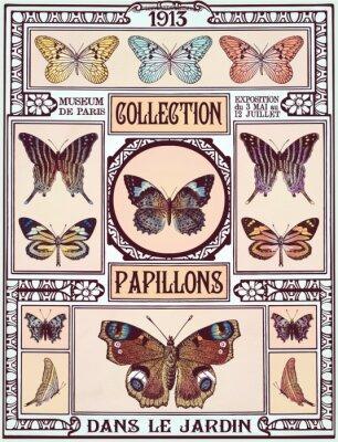 Väggdekor fjärilar samling