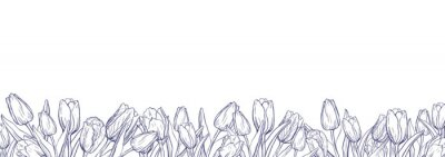 Väggdekor Flat horizontal banner template with outline tulips on white background