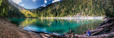 Väggdekor Flicka beundrar vacker utsikt över bergen och sjön i Ritsa Reserve i Abchazien