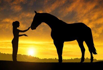 Väggdekor Flicka med en häst på solnedgången