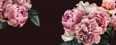 Väggdekor Floral banner, flower cover or header with vintage bouquets. Pink peonies, white roses isolated on black background.