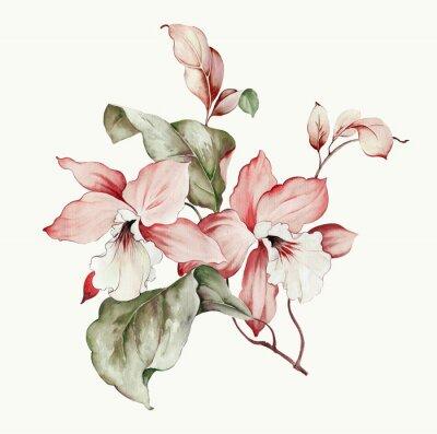 Väggdekor Flowers watercolor illustration.Manual composition.Big Set watercolor elements.