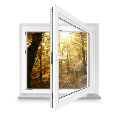 Väggdekor fönster 28