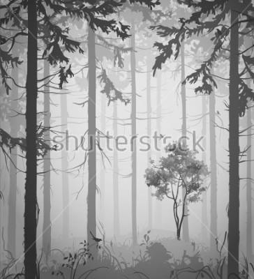 Väggdekor forest air landscape with birds, black and white, vector illustration