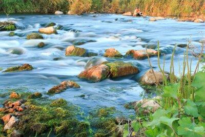 Väggdekor forsande flod