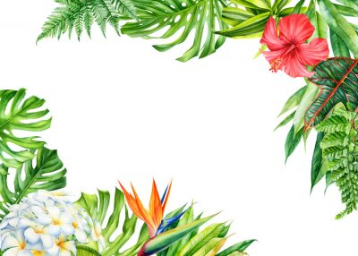 Väggdekor frame, tropical leaves and flowers on an isolated background, greeting cards with space for text, watercolor painting,  floral design, plumeria, strelitzia, palms, monstera, ficus
