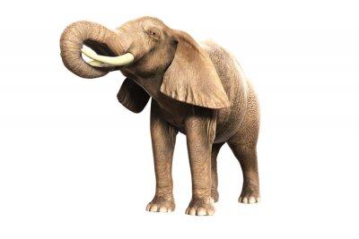 Väggdekor Freigestellter Elefant mit erhobenem Russel (gerendertes Bild)