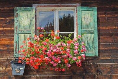 Väggdekor gammalt trä fönster med blomlåda