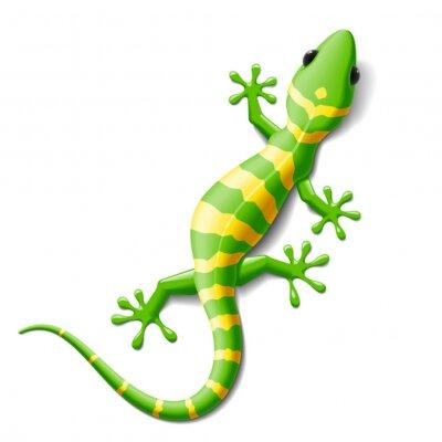 Väggdekor Gecko
