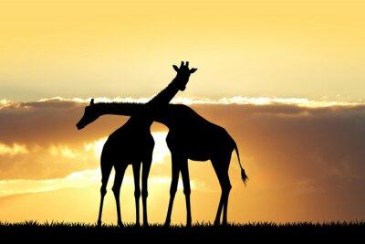 Väggdekor giraff silhuett vid solnedgången