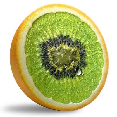 Väggdekor GMO Concept.