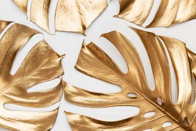 Väggdekor Golden monstera leaves on white background