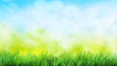 Väggdekor gräs bakgrund