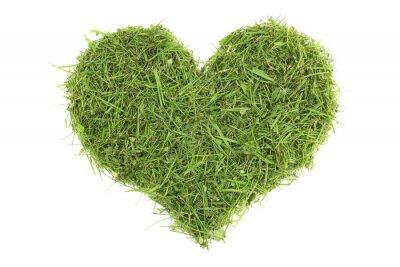 Väggdekor Gräsklipp i hjärtform