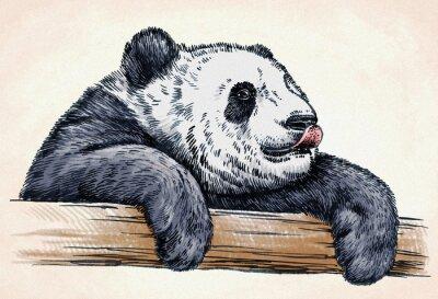 Väggdekor gravera bläck draw panda illustration