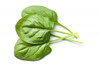 Väggdekor gröna bladspenat