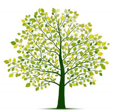 Väggdekor gröna träd isolerat