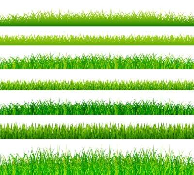Väggdekor Grönt gräs gränser inställd