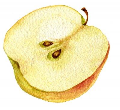 Väggdekor Halva Apple teckning av vattenfärg