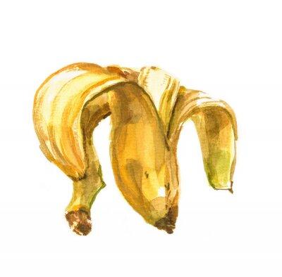 Väggdekor Hand målade akvarellillustration av en banan