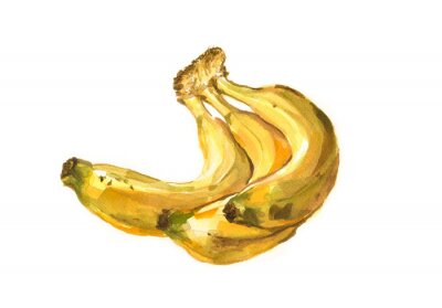 Väggdekor Hand målade vattenfärg illustration av en bananer