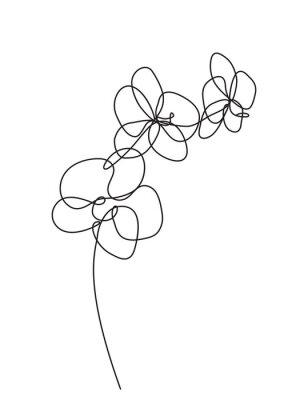 Väggdekor Handritade orkidéblommor. Svartvit vektorillustration