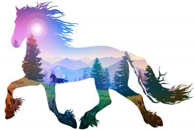 Väggdekor häst