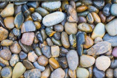 Väggdekor havs stenar
