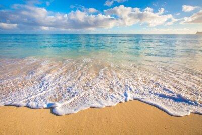 Väggdekor Hawaii stränder