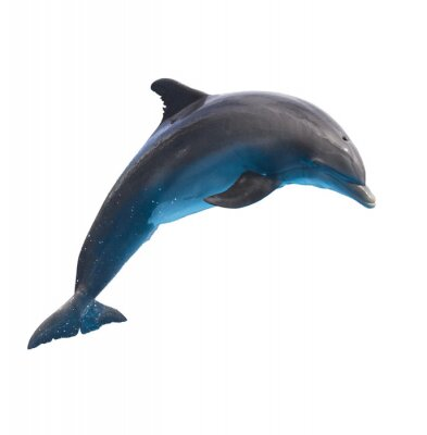 Väggdekor hoppning delfin på vitt