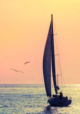 Väggdekor horisont segelbåt och två mås