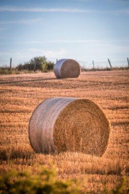 Väggdekor Höstackar på ett fält