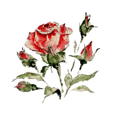 Väggdekor Illustration av röd ros