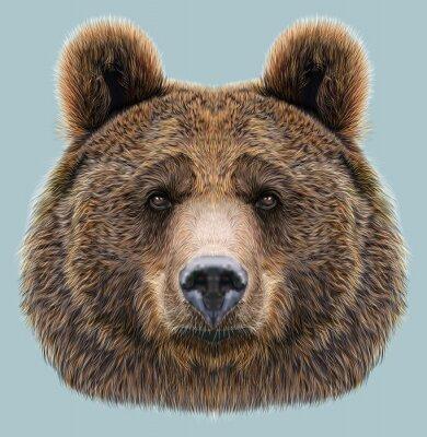 Väggdekor Illustrerad Porträtt av Bear på blå bakgrund