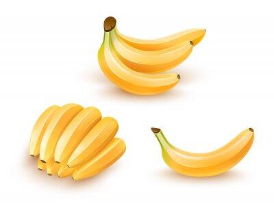 Väggdekor Inställda isolerade bananfrukter. Eps10 illustration.